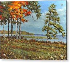 Browns Bay Acrylic Print by Richard De Wolfe