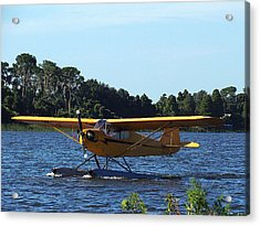 Brown's Piper Cub 005  Acrylic Print
