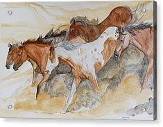 Bruneau Idaho Acrylic Print