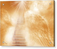 Brush Of Angels Wings Acrylic Print by Jennifer Page