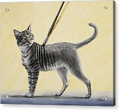 Brushing The Cat - No. 2 Acrylic Print