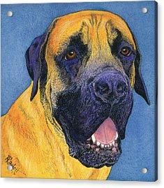 Brutus #2 Acrylic Print