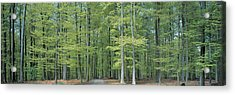 Bruxelles Belgium Acrylic Print by Panoramic Images