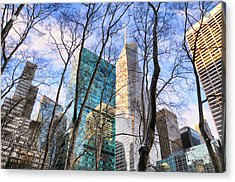 Bryant Park Tree Tops Acrylic Print by Diana Angstadt
