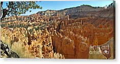 Bryce Afternoon Acrylic Print