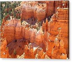 Bryce Canyon 138 Acrylic Print by Maria Huntley