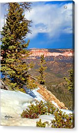 Bryce Canyon Cliff Shot 4 Acrylic Print by Marti Green