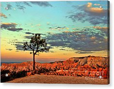Bryce Canyon Acrylic Print by Leslie Kirk
