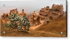 Bryce Canyon National Park Acrylic Print by Larry Marshall