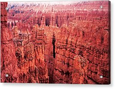 Bryce Canyon Red Acrylic Print