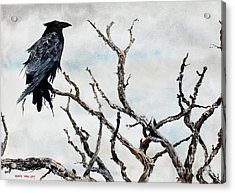 Bryce's Raven Acrylic Print by Monte Toon