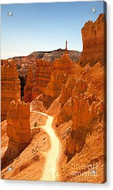 Bryce Canyon Trail Acrylic Print by Jane Rix