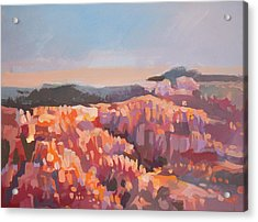 Bryce Canyon - Utah Acrylic Print by Filip Mihail