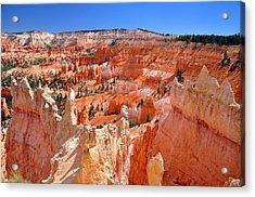 Bryce Canyon Utah Acrylic Print