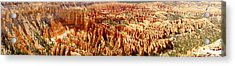 Acrylic Print featuring the photograph Bryce Canyon Utah Panoramic by Kathy Churchman