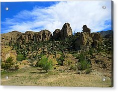 Bryce Thompson Arboretum State Park Acrylic Print by Feva  Fotos