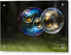 Bubble Perspective Acrylic Print by Darcy Michaelchuk