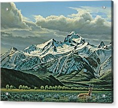 Buck Mountain From Antelope Flat Acrylic Print by Paul Krapf
