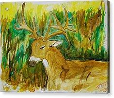 Buck Of A Lifetime Acrylic Print