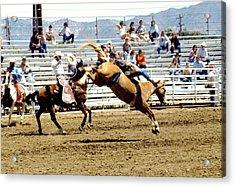 Buck Rider Acrylic Print