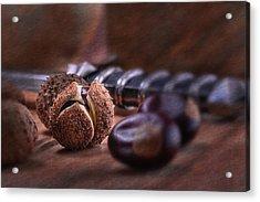 Buckeye Nut Still Life Acrylic Print by Tom Mc Nemar