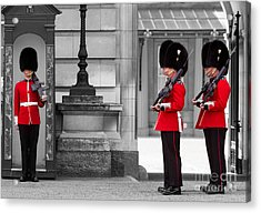 Buckingham Palace Guards Acrylic Print by Matt Malloy
