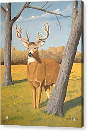 Bucky The Deer Acrylic Print by Norm Starks