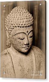 Buddha Enlightened Acrylic Print by Paul Ward