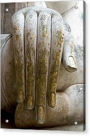 Buddha Hand Acrylic Print by Zina Zinchik