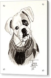 Buddy The Boxer Acrylic Print