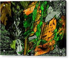 Buenos Aires 5 Acrylic Print by Horacio Carrena