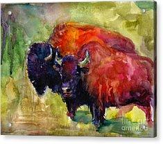 Buffalo Bisons Painting Acrylic Print by Svetlana Novikova