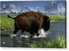 Buffalo Crossing A River Acrylic Print by Daniel Eskridge