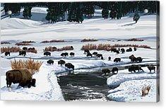 Buffalo Ford Winter Acrylic Print