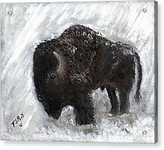 Buffalo In The Snow Acrylic Print by Barbie Batson