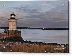Bug Light Acrylic Print