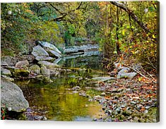 Bull Creek In The Fall Acrylic Print