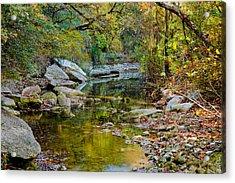 Bull Creek In The Fall Acrylic Print by Mark Weaver