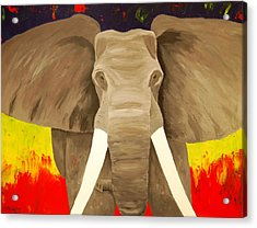 Bull Elephant Prime Colors Acrylic Print