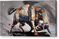 Bull Fight Back Acrylic Print by Dragan Petrovic Pavle