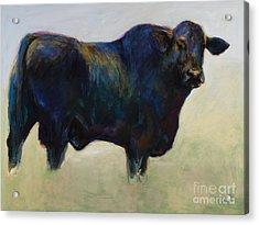 Bull Acrylic Print by Frances Marino