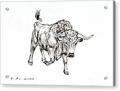 Bull Acrylic Print by Kurt Tessmann