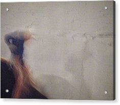 Acrylic Print featuring the photograph Bull Rider by Brian Boyle