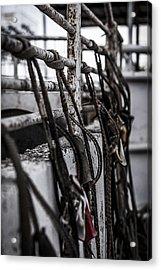 Bull Ropes Acrylic Print