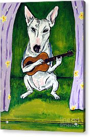 Bull Terrier Playing Guitar Acrylic Print by Jay  Schmetz