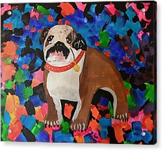 Bulldog Abstract Acrylic Print by Ryan Griswold