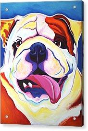 Bulldog - Grin Acrylic Print by Alicia VanNoy Call