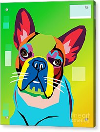 Bulldog  Acrylic Print by Mark Ashkenazi