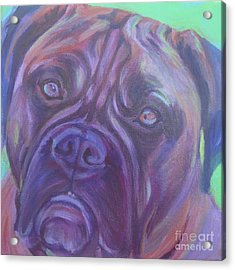 Bullmastiff Acrylic Print