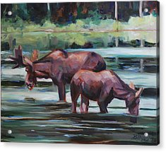 Bullwinkle And Friend Acrylic Print by Billie Colson